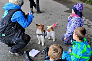 firbent terapi dyr som pedagogisk verktøy