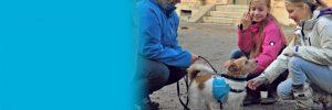 Firbent terapi fadderhund