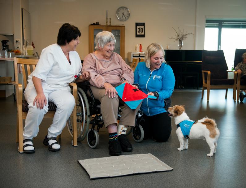 Hva er en terapihund?